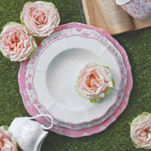 Servizio MayFlower da Rose&Tulipani
