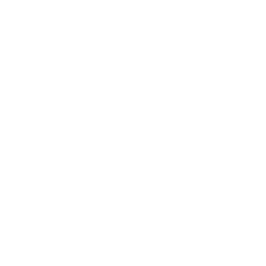 Target Point