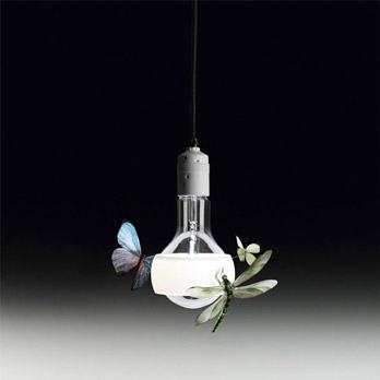 Luminaire Johnny B. Butterfly