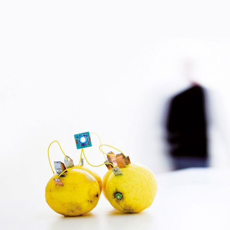 Lamp Lemon Ledon