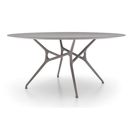 Tisch Branch