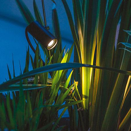 Lamp Grillo