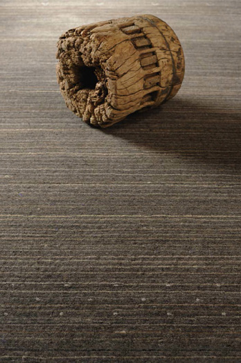 Carpet Desert
